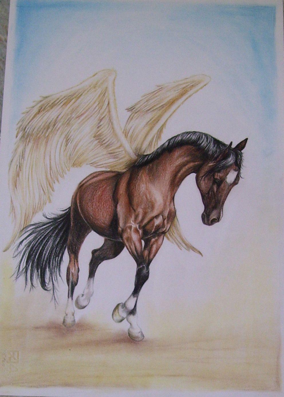 Ritratti su commissione galleria ritratti di cavalli for Disegni di cavalli a matita