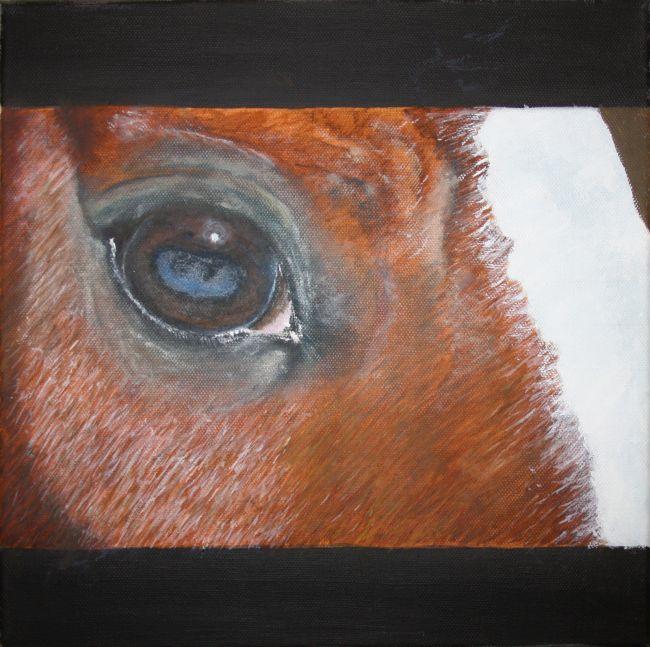 Olio su tela galleria ritratti di cavalli quadri di cavalli disegni di cavalli - Lo specchio nell arte ...